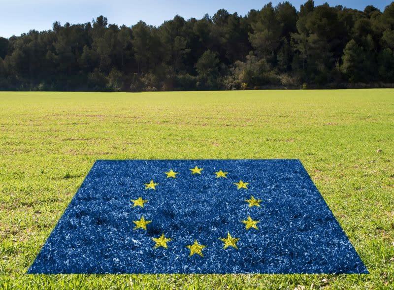 EU flag on grass